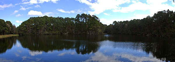 Lake Photograph - Lake Thomas Hilton Head by Thomas Marchessault