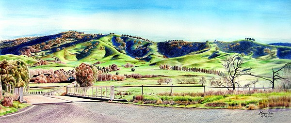 Landscape Drawing - Landscape Of Nsw Australia by Mago Lee