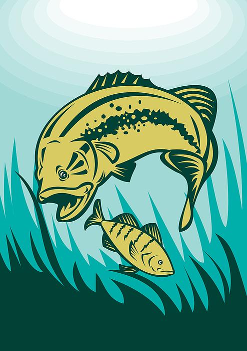 Largemouth Digital Art - Largemouth Bass Preying On Perch Fish by Aloysius Patrimonio