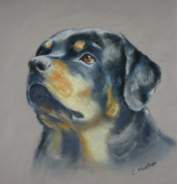 Dog Painting - Lars by Carol Mueller