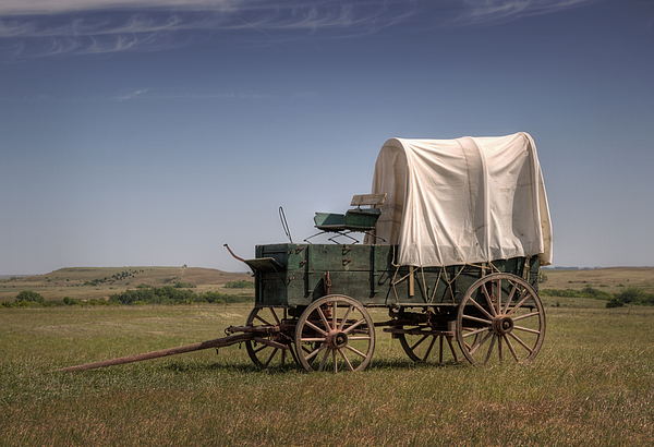 Drovers Photograph - Last Stop by Fred Lassmann