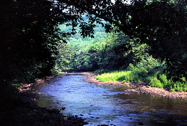 Usa Photograph - Late Summer On Williams River by Thomas R Fletcher