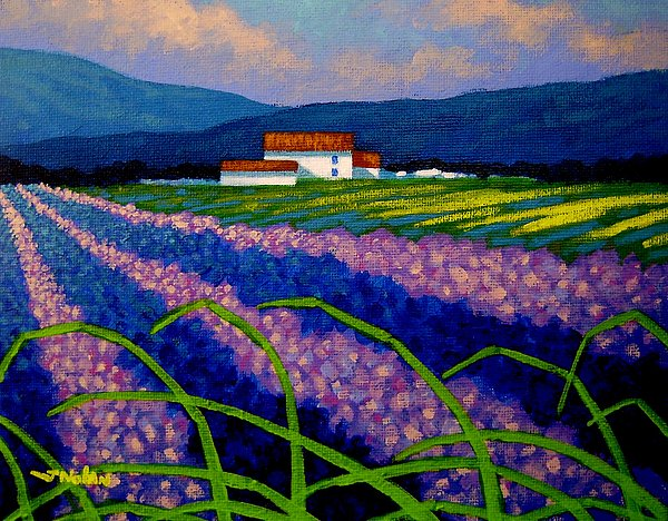 France Painting - Lavender Field France by John  Nolan