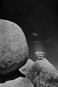 Ledas Landscape 1984 Photograph by John Wimberley