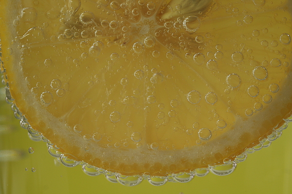 Fruit Photograph - Lemon Bubbles by Christine Amstutz