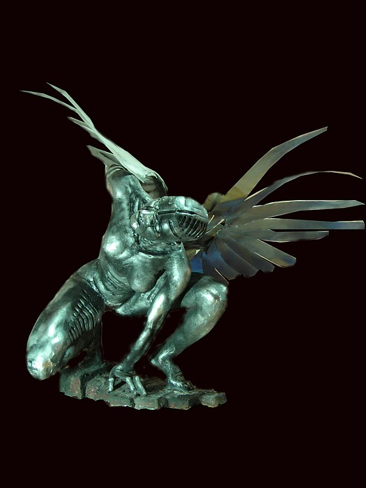 Leonarda Quiere Volar    Leonarda Want To Fly Sculpture by Edwar Garces