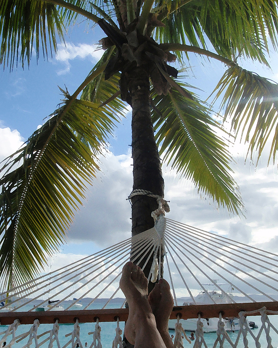 Caribbean Photograph - Life Is Good by Ginger Howland