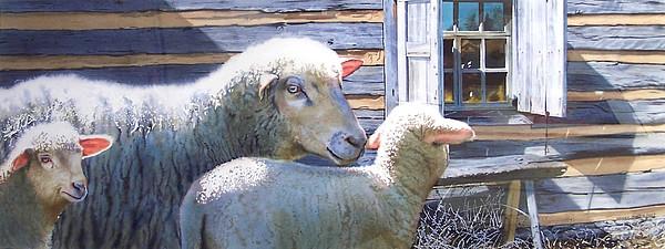 Sheep Painting - Life Renewed by Denny Bond