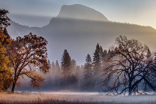 Half Dome Photograph - Light Rays In Yosemite Ground Fog by Jeff Sullivan