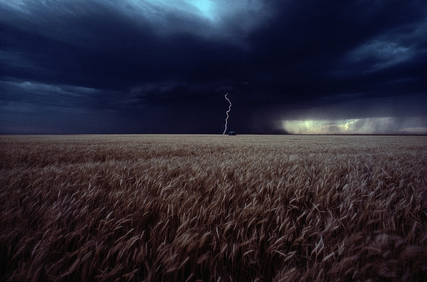 Nobody Photograph - Lightning Flashes Above A Kansas Wheat by Cotton Coulson