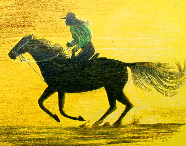 Horse Drawing - Like The Wind by Dan Hausel