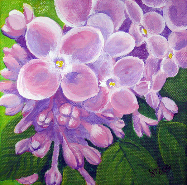 Lilacs Painting - Lilacs by Sharon Marcella Marston