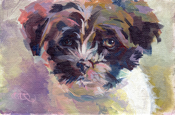 Havanese Painting - Lilly Pup by Kimberly Santini