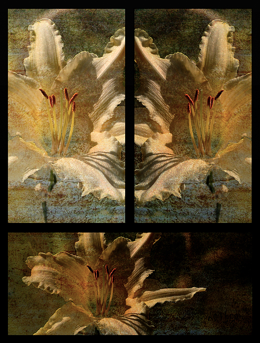 Floral Photograph - Lily Collage by Lois Bryan