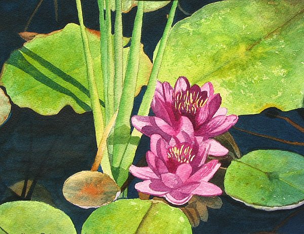 Lily Pads Painting - Lily Pads by Sharon Farber