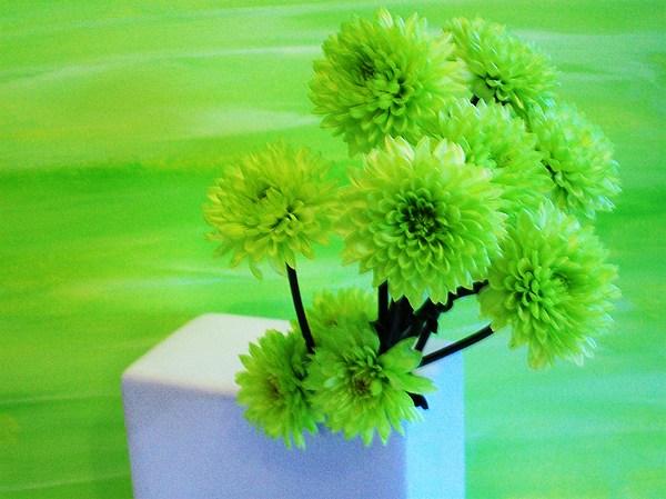 Photo Photograph - Lime Flowers by Marsha Heiken