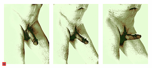 Male Nude Photograph - Lingham by Martin Billings