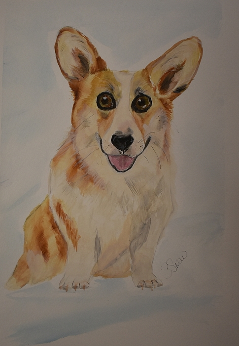Corgi Painting - Little Corgi by Susan Snow Voidets