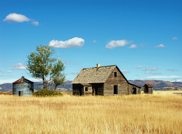 Landscape Photograph - Little House On A Prairie  by Jan  Tribe