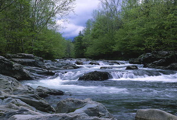 Great Smoky Mountains Photograph - Little Pigeon River by Sandra Bronstein
