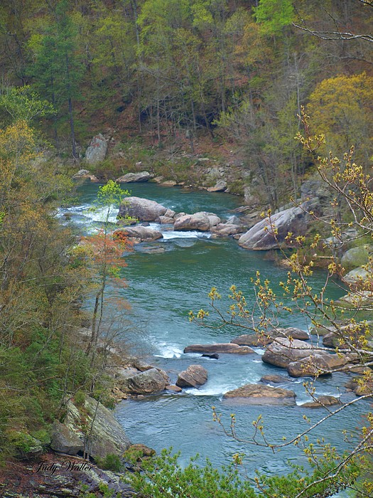 River Photograph - Little River Canyon by Judy  Waller