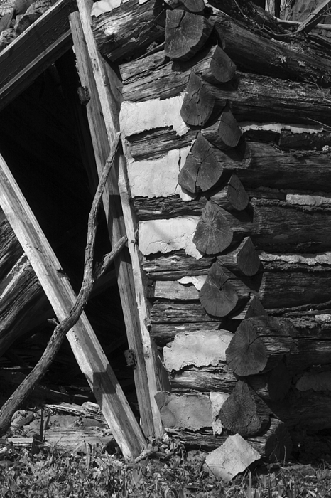 lloyd-shanks-barn-3BW Photograph by Curtis J Neeley Jr