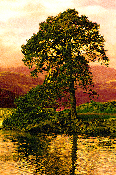 Loch Lomand Photograph - Loch Lomond Gloaming by Rianna Stackhouse