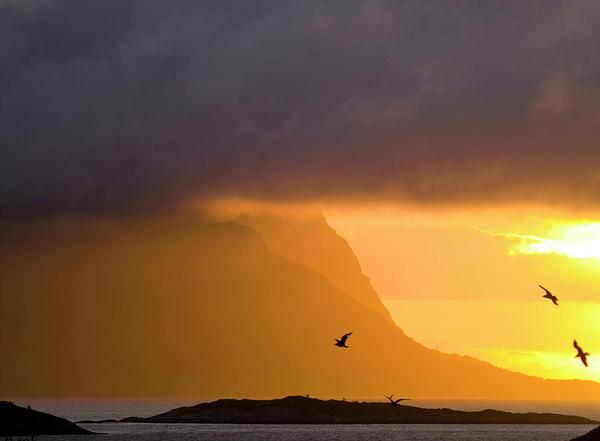 Lofoten Island After The Storm Photograph