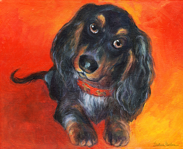 Long-haired Painting - Long Haired Dachshund Dog Puppy Portrait Painting by Svetlana Novikova