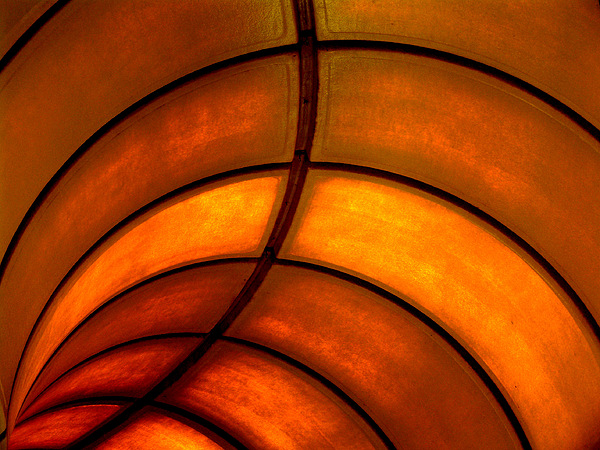 Abstract Photograph - Looking Up by Elizabeth McPhee