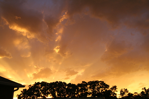 Lords Light Photograph by Linda Ostby