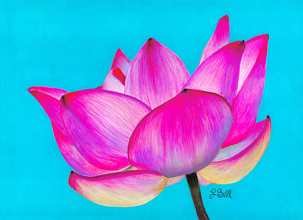 Lotus Painting - Lotus  by Laura Bell