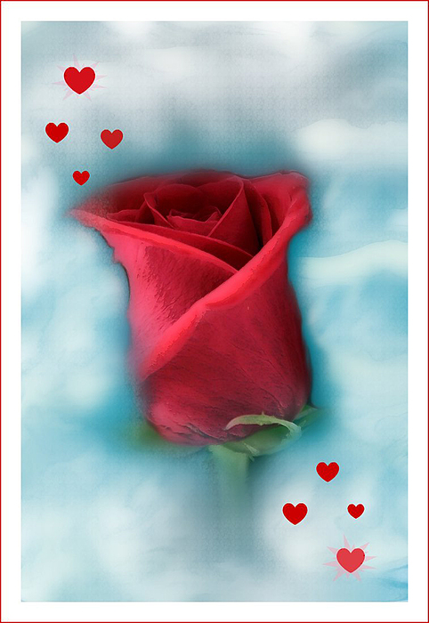 Flowers Photograph - Love Is In The Air by Linda Sannuti