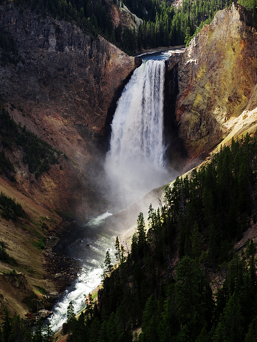 Landscape Photograph - Lower Falls At Yellowstone by Mary Capriole