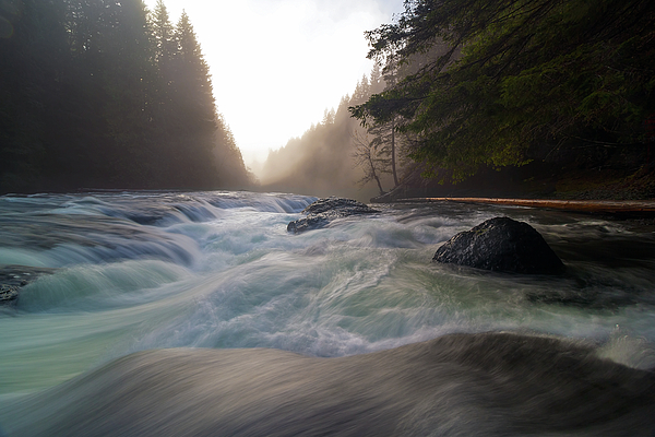 Waterfall Photograph - Lower Lewis River Falls During Sunset by David Gn