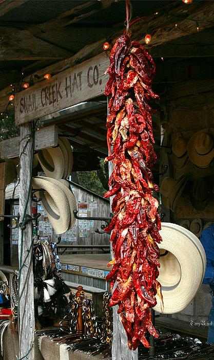Texas Photograph - Luckenbach Texas by Terry Burgess