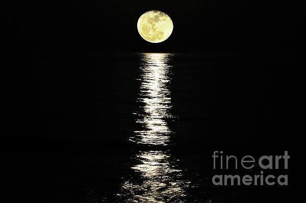 Moon Over Ocean Photograph - Lunar Lane by Al Powell Photography USA