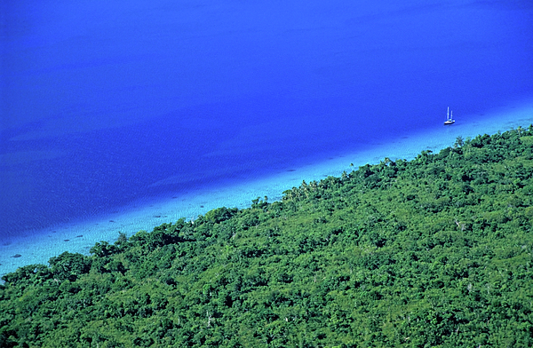 Beautiful Photograph - Lush Coast And Blue Waters Of The Sea Surrounding Mosso Island by Sami Sarkis
