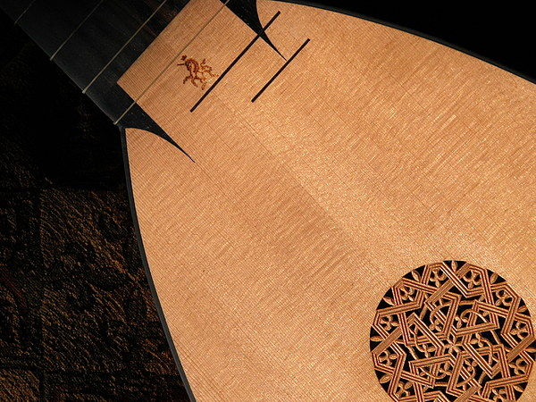 Lute Photograph - Lute Unstrung  by Donna Stewart