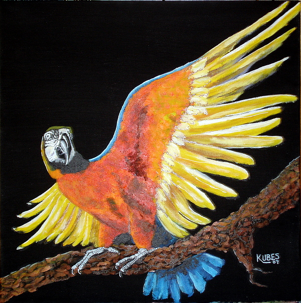 Macaw Painting - Macaw - Wingin It by Susan Kubes