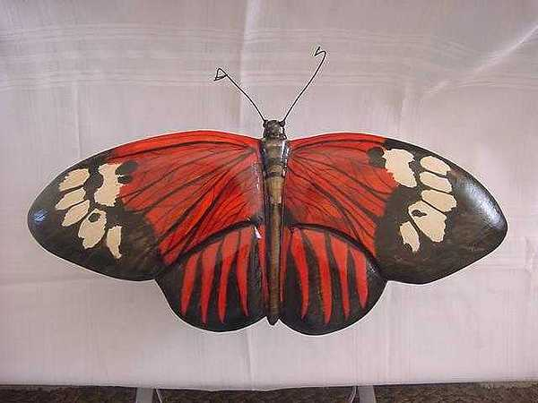Dated Painting - Madiera Butterfly-sold by Lisa Ruggiero