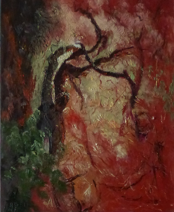 Trees Painting - Madrona Tree by Irena Jablonski