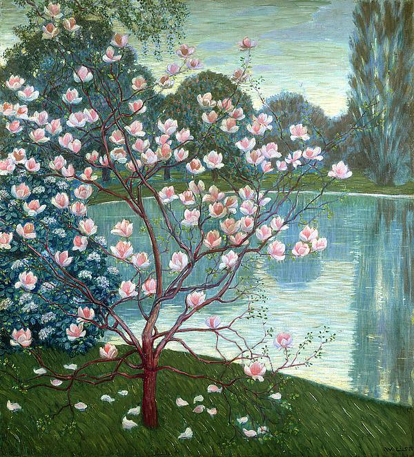 Magnolia Painting - Magnolia by Wilhelm List