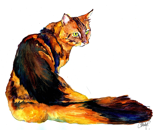 Cat Painting - Maine Coon Cat Portrait by Christy  Freeman