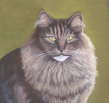 Animal Portrait Pastel - Maine Coon Serenity by Molly Gochenour