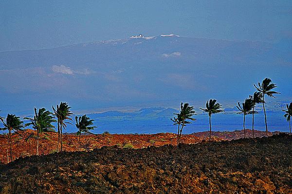 Mauna Kea Photograph - Majestic Mauna Kea by Bette Phelan