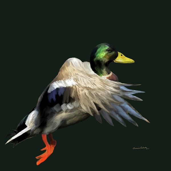 Animals Painting - Mallard Freehand by Ernie Echols
