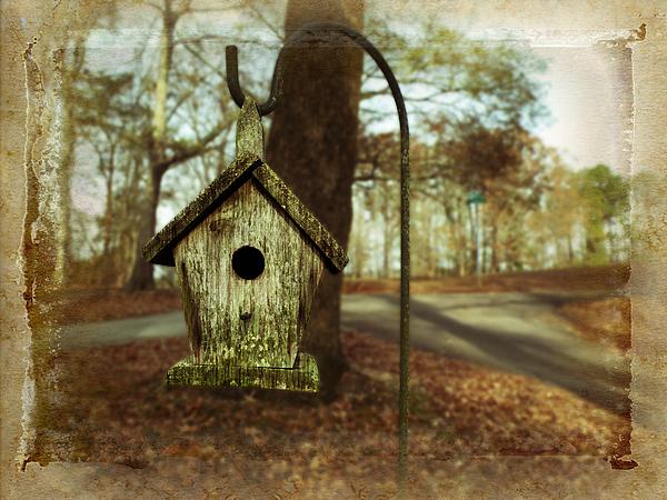 Birdhouse Photograph - Mamaws Birdhouse by Steven Michael