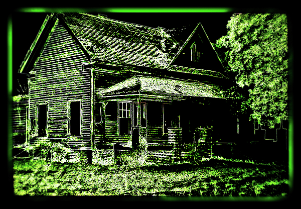 House Photograph - Man Abandons Nature Reclains by Leslie Revels