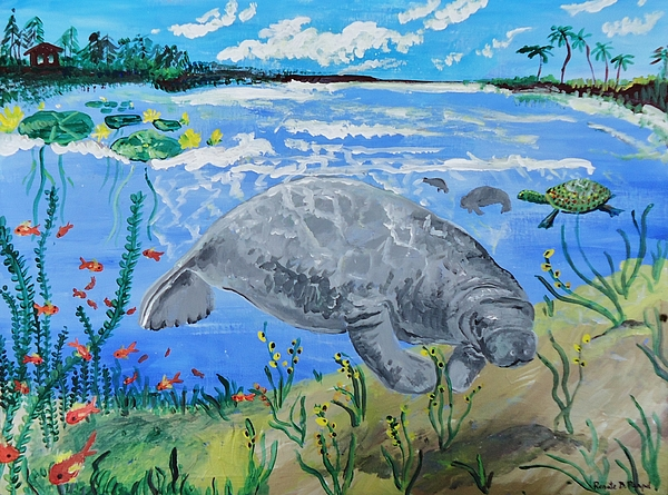 Manatee Painting   Manatee In The Lagoon By Renate Pampel